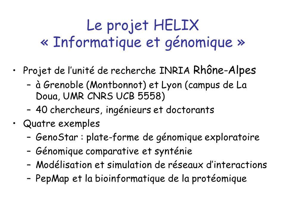 Le projet HELIX « Informatique et génomique » Projet de lunité de recherche INRIA Rhône-Alpes –à Grenoble (Montbonnot) et Lyon (campus de La Doua, UMR CNRS UCB 5558) –40 chercheurs, ingénieurs et doctorants Quatre exemples –GenoStar : plate-forme de génomique exploratoire –Génomique comparative et synténie –Modélisation et simulation de réseaux dinteractions –PepMap et la bioinformatique de la protéomique