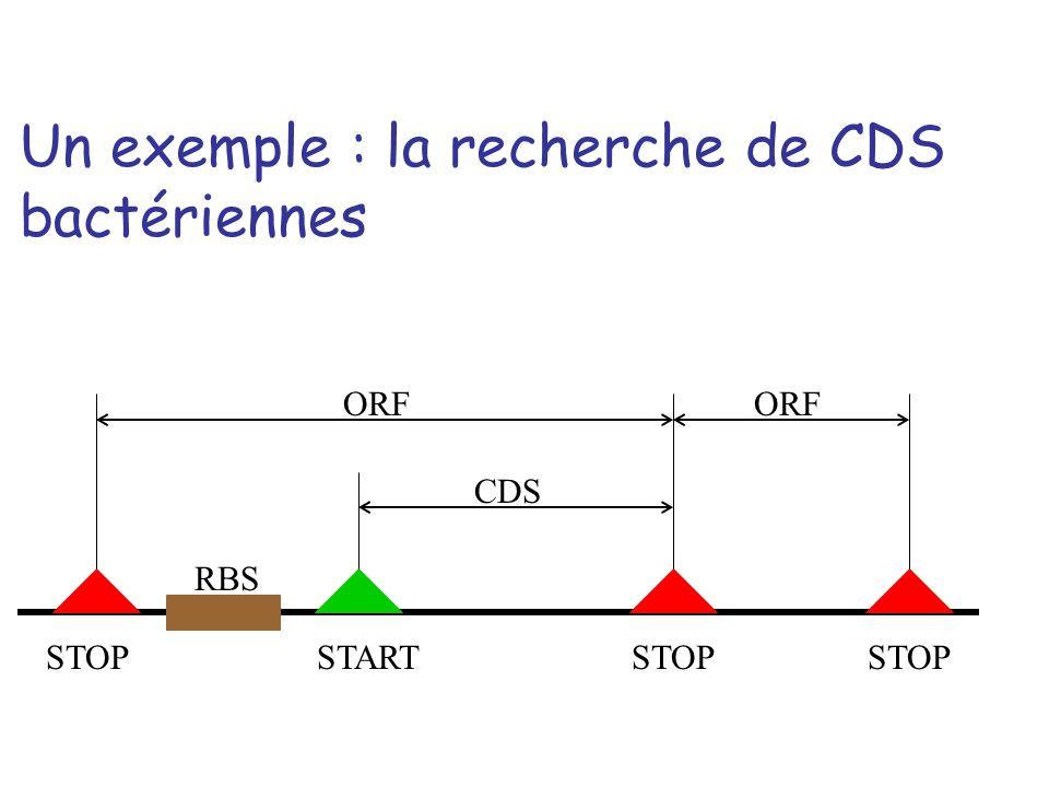 CDS ORF RBS STOPSTARTSTOP Un exemple : la recherche de CDS bactériennes