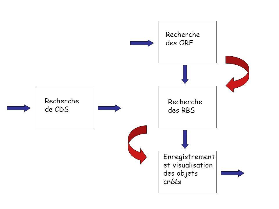 Recherche de CDS Recherche des ORF Recherche des RBS Enregistrement et visualisation des objets créés