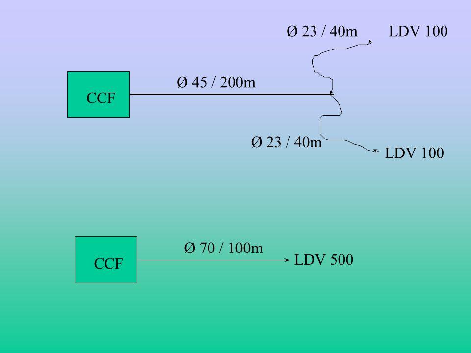 V. Possibilité en établissement dun CCF Le CFF peut établir différents types détablissements. En feux de forêts, toutes les manoeuvres sexécuteront du