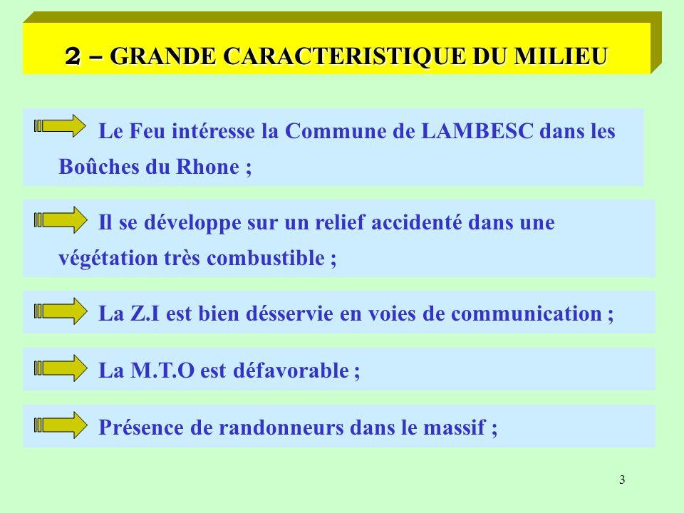 2 1 – PHYSIONOMIE GENERALE FEU DE FORET Date : SAMEDI 20 AOUT 1999 à 12H40