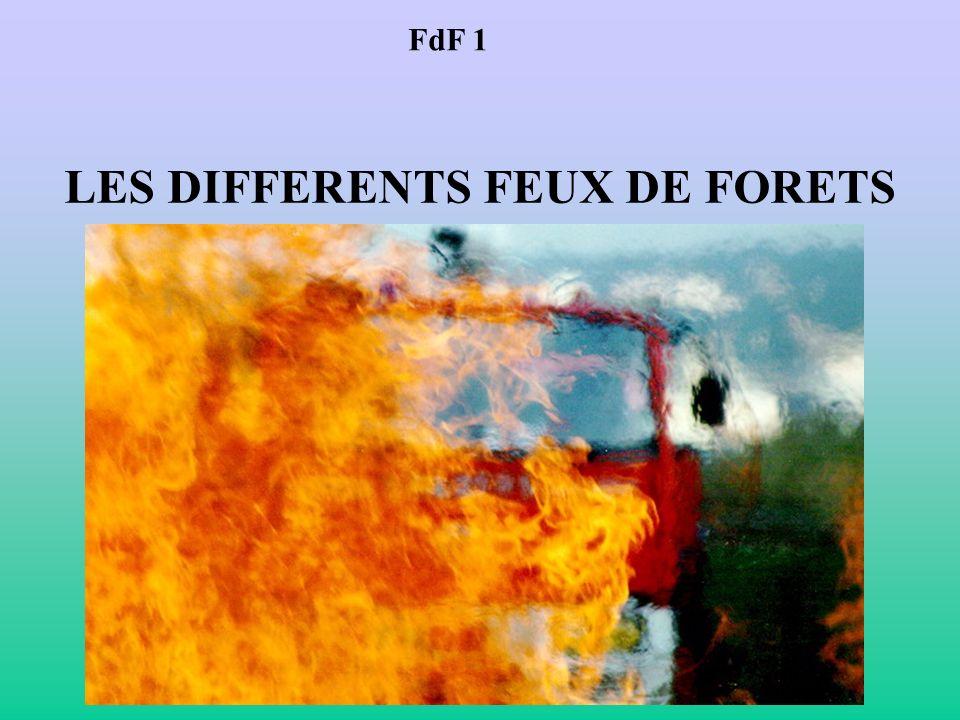 FdF 1 LES DIFFERENTS FEUX DE FORETS