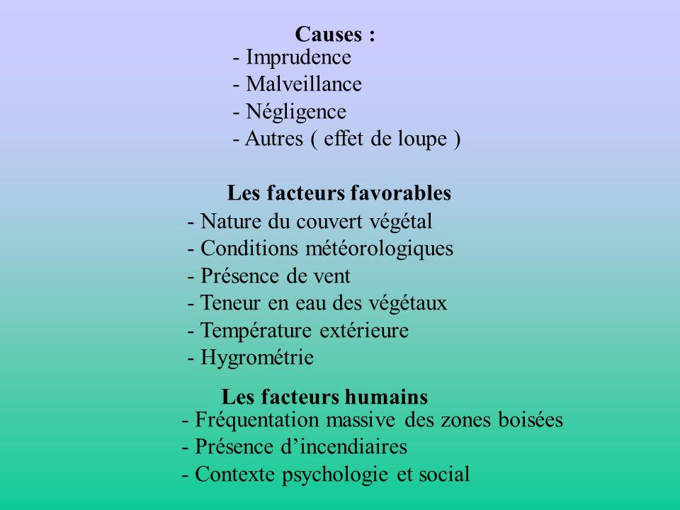 Causes : - Imprudence - Malveillance - Négligence - Autres ( effet de loupe ) Les facteurs favorables - Nature du couvert végétal - Conditions météoro