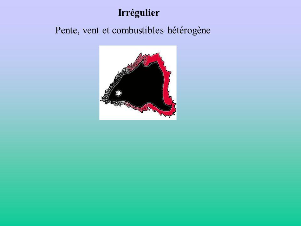 Irrégulier Pente, vent et combustibles hétérogène