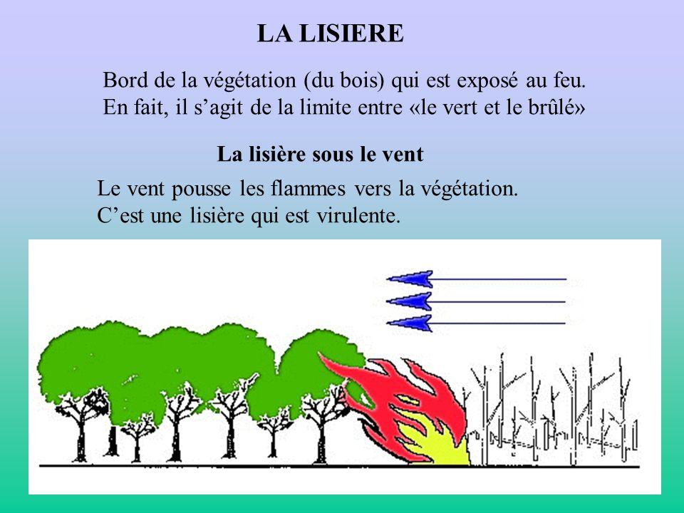 LA LISIERE Bord de la végétation (du bois) qui est exposé au feu. En fait, il sagit de la limite entre «le vert et le brûlé» La lisière sous le vent L
