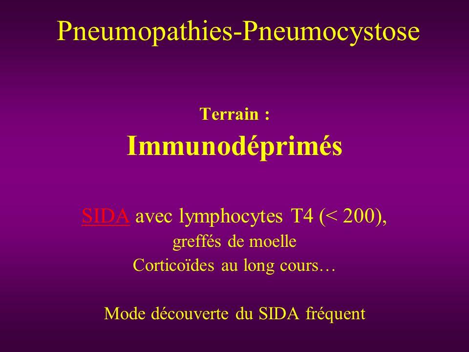 Clinique : début peu symptomatique si SIDA toux sèche dyspnée d effort fébricule Aggravation très progressive Plus rapidement symptomatique et grave si autre immunodépression Pneumopathies-Pneumocystose