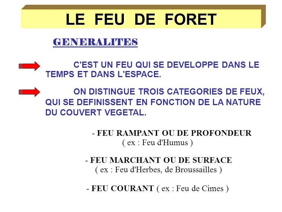 TYPES DE FEUX DE FORETS