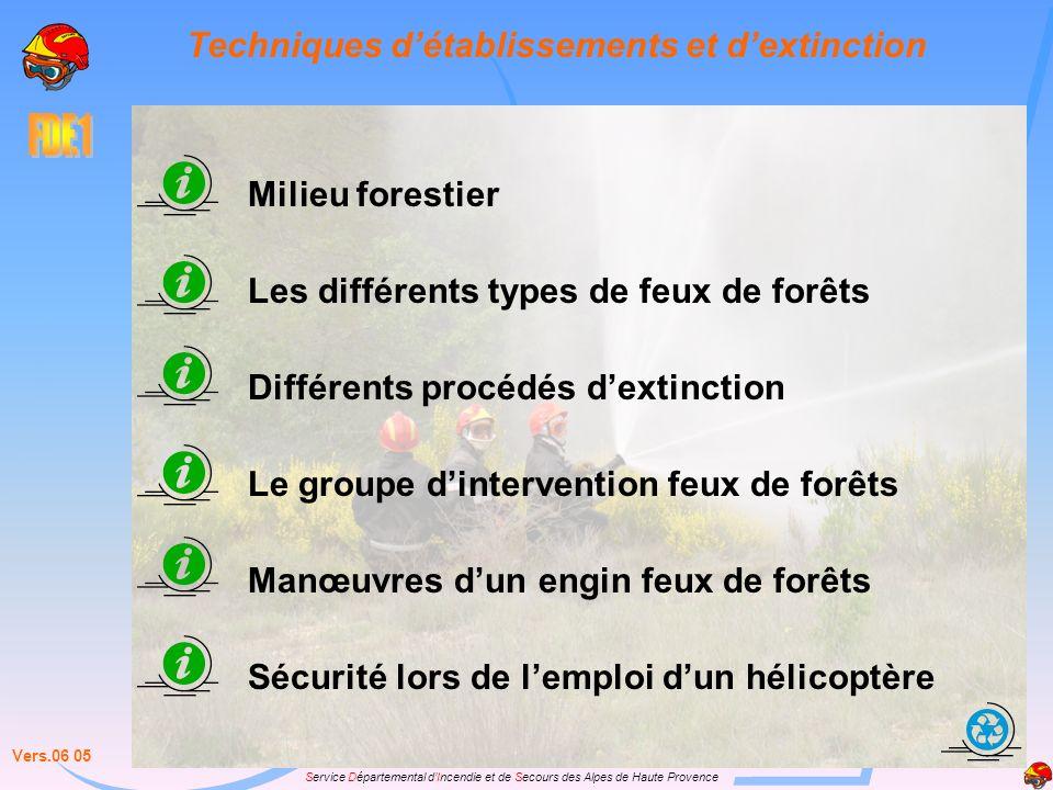 Service Départemental dIncendie et de Secours des Alpes de Haute Provence Techniques détablissements et dextinction Milieu forestier Les différents ty