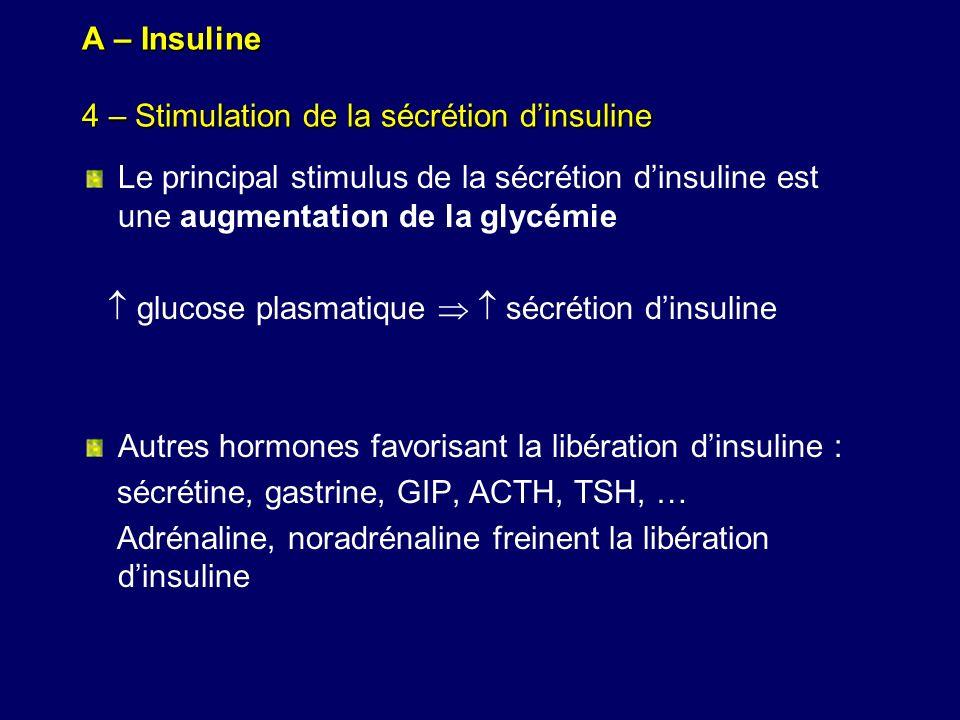 A – Insuline 4 – Stimulation de la sécrétion dinsuline Le principal stimulus de la sécrétion dinsuline est une augmentation de la glycémie glucose pla