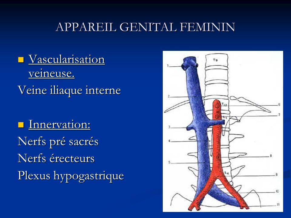 APPAREIL GENITAL FEMININ Vascularisation veineuse. Vascularisation veineuse. Veine iliaque interne Innervation: Innervation: Nerfs pré sacrés Nerfs ér