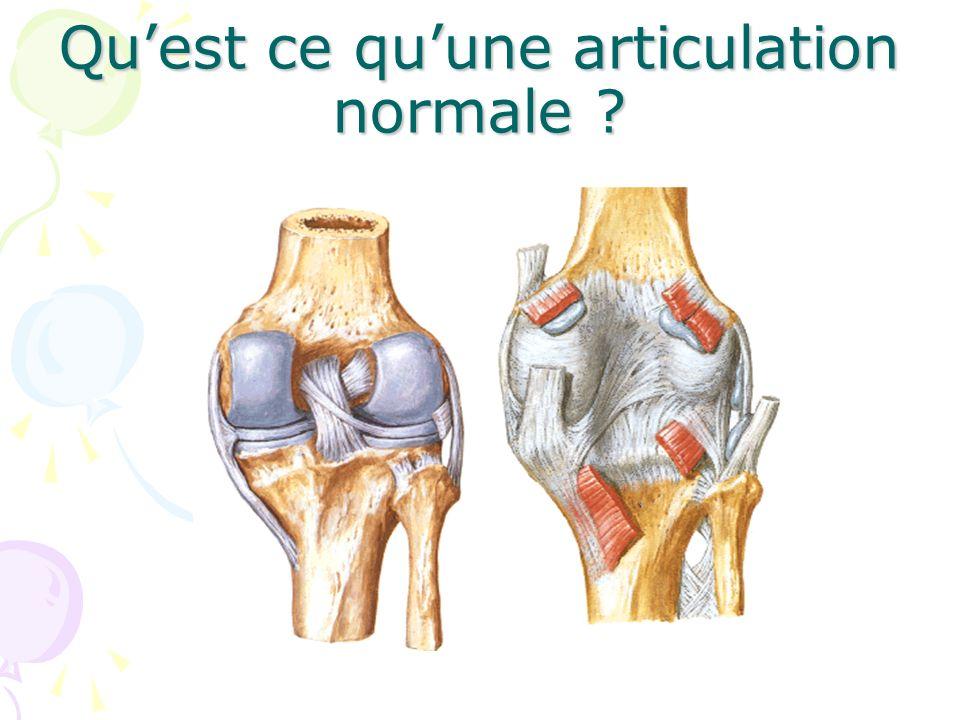 Cartilage articulaire –Rôle : glissement surface articulaire, amortisseur (protège los) –Constitution : non vascularisée, pas de possibilité de réparation
