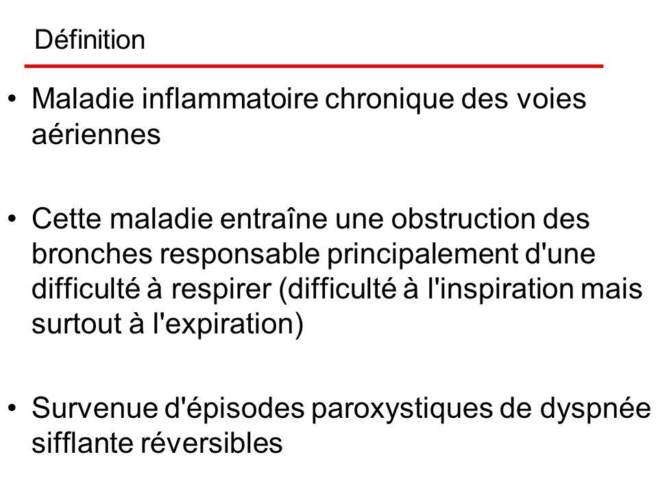 Asthme IFSI. 23 avril 2003 Dr Alexandre DUGUET Unité de Réanimation du Service de Pneumologie