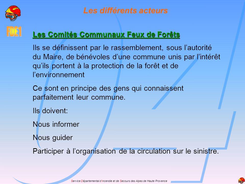 Service Départemental dIncendie et de Secours des Alpes de Haute Provence Les différents acteurs Les Comités Communaux Feux de Forêts Ils se définisse