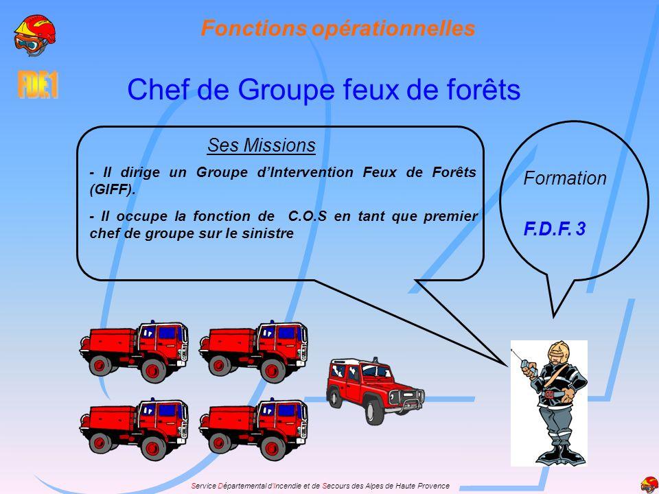 Service Départemental dIncendie et de Secours des Alpes de Haute Provence Ses Missions - Il dirige un Groupe dIntervention Feux de Forêts (GIFF). - Il
