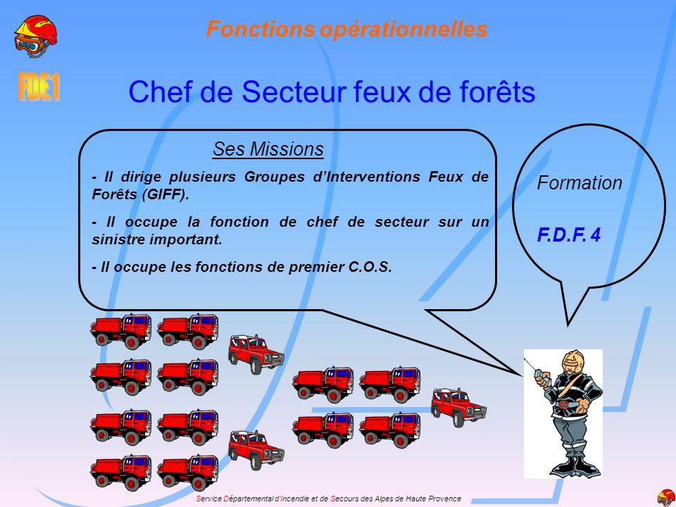 Service Départemental dIncendie et de Secours des Alpes de Haute Provence Fonctions opérationnelles Chef de Secteur feux de forêts Formation F.D.F. 4