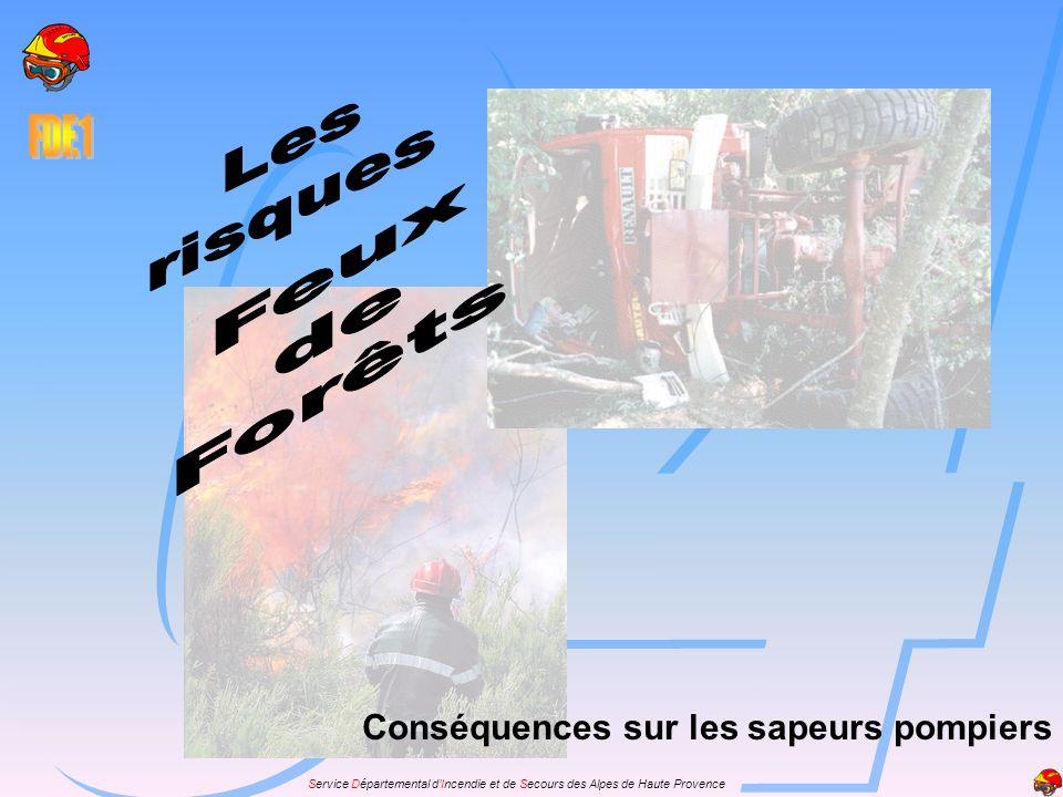 Service Départemental dIncendie et de Secours des Alpes de Haute Provence Conséquences sur les sapeurs pompiers Tous ces risques liés aux feux de forêts peuvent entraîner chez les sapeurs pompiers deux types daccidents: les accidents immédiats survenant au court de la lutte, les accidents immédiats survenant au court de la lutte, les accidents secondaires, séquelles tardives de blessures ou de stress dû à la lutte.