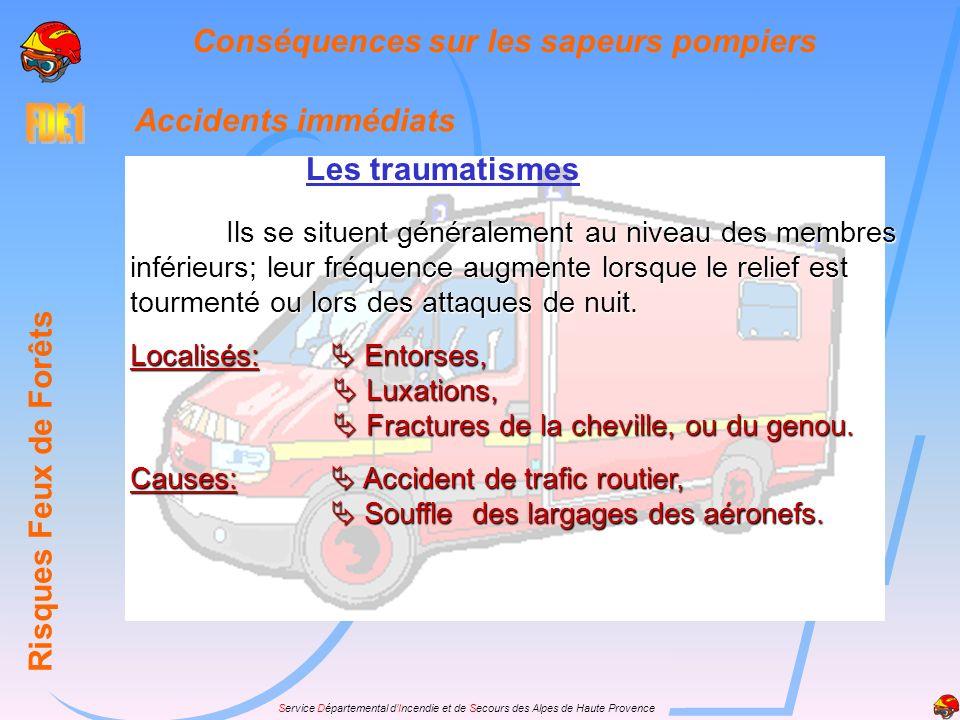 Service Départemental dIncendie et de Secours des Alpes de Haute Provence Accidents immédiats Les traumatismes Risques Feux de Forêts Conséquences sur