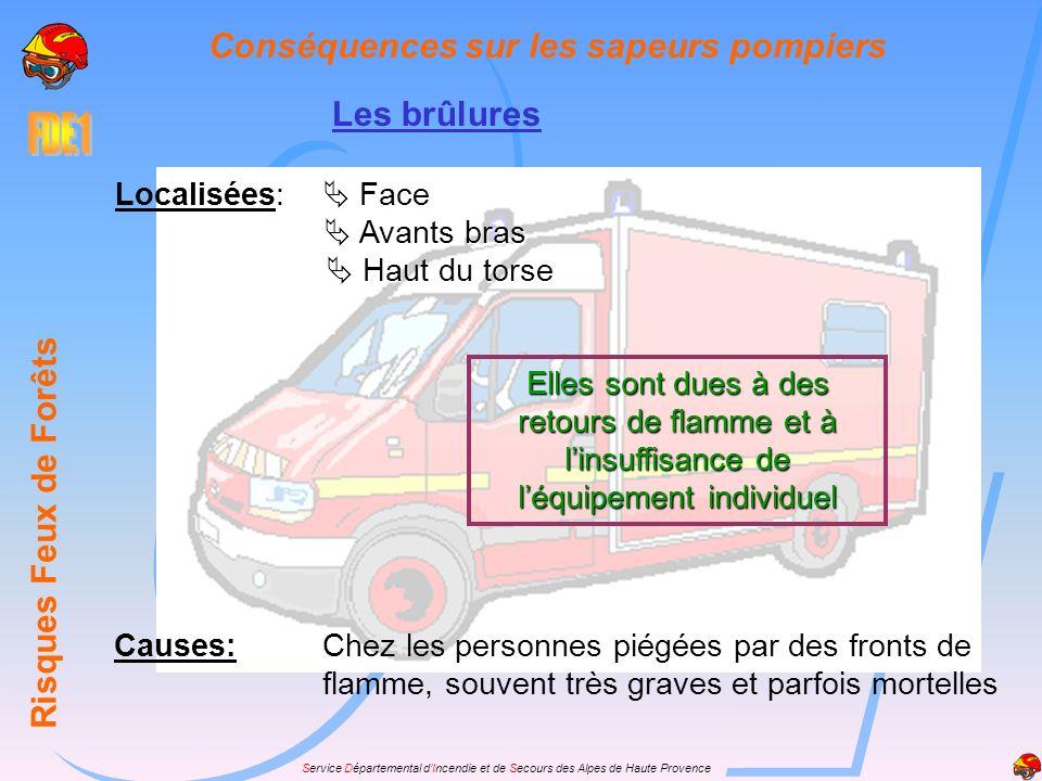 Service Départemental dIncendie et de Secours des Alpes de Haute Provence Les brûlures Risques Feux de Forêts Conséquences sur les sapeurs pompiers Fa