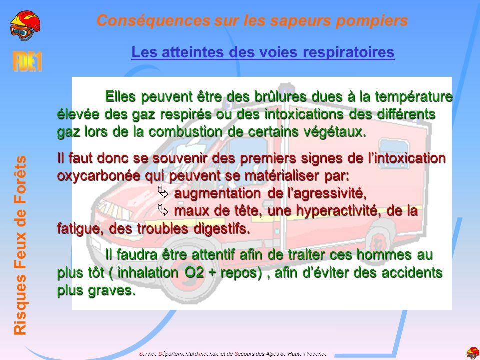 Service Départemental dIncendie et de Secours des Alpes de Haute Provence Les atteintes des voies respiratoires Risques Feux de Forêts Conséquences su