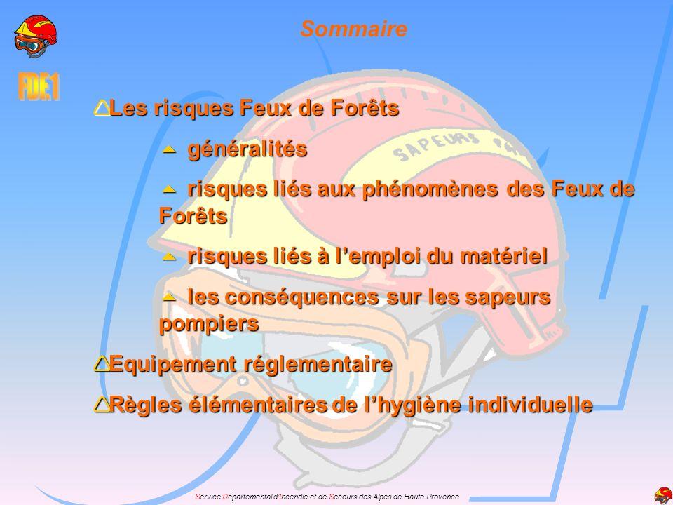 Service Départemental dIncendie et de Secours des Alpes de Haute Provence Sommaire Les risques Feux de Forêts Les risques Feux de Forêts généralités g
