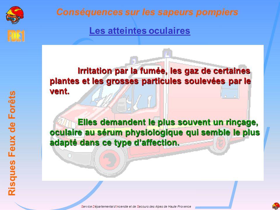 Service Départemental dIncendie et de Secours des Alpes de Haute Provence Les atteintes oculaires Risques Feux de Forêts Conséquences sur les sapeurs