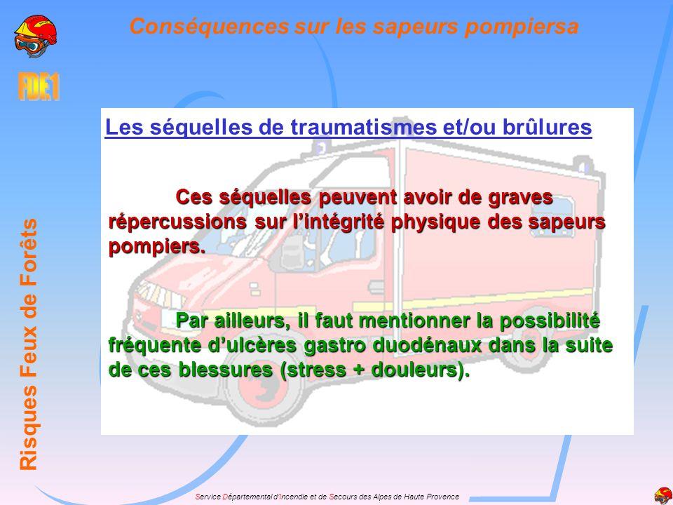 Service Départemental dIncendie et de Secours des Alpes de Haute Provence Risques Feux de Forêts Conséquences sur les sapeurs pompiersa Les séquelles