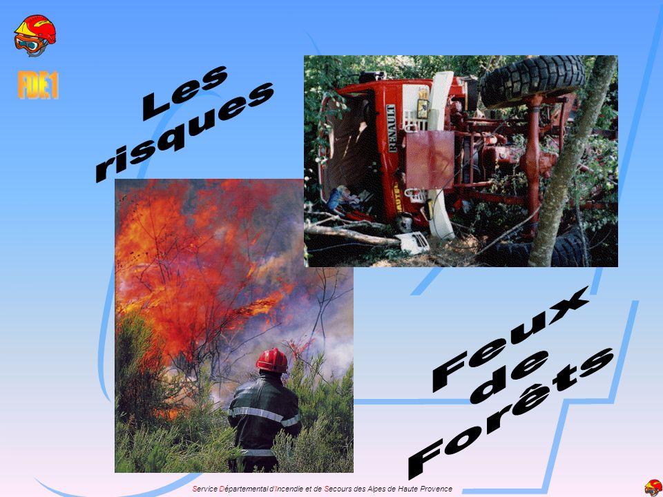 Risques Feux de Forêts Généralités Le feu de forêt, sinistre en évolution constante, engendre de nombreux risques pour le personnel.