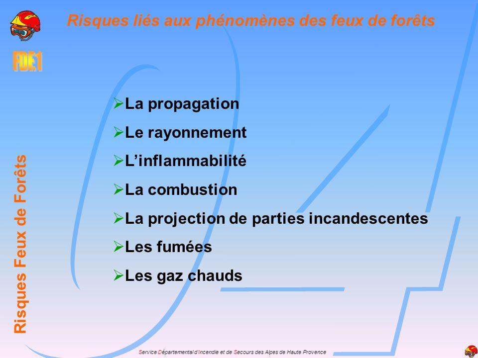 Service Départemental dIncendie et de Secours des Alpes de Haute Provence Risques Feux de Forêts Risques liés aux phénomènes des feux de forêts La pro