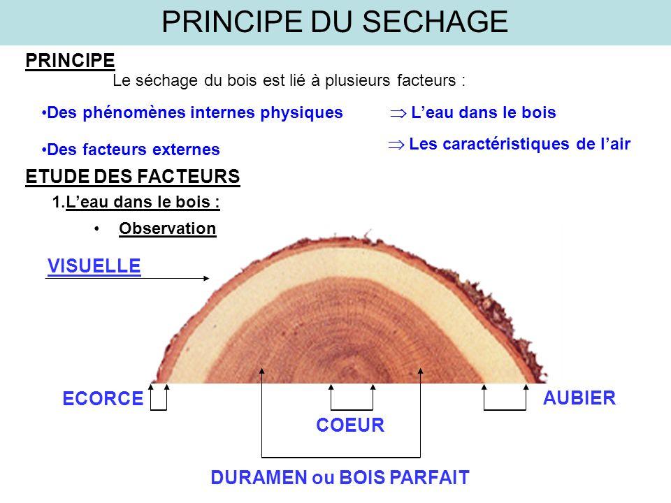 PRINCIPE DU SECHAGE PRINCIPE ETUDE DES FACTEURS ECORCE AUBIER COEUR DURAMEN ou BOIS PARFAIT VISUELLE Le séchage du bois est lié à plusieurs facteurs :