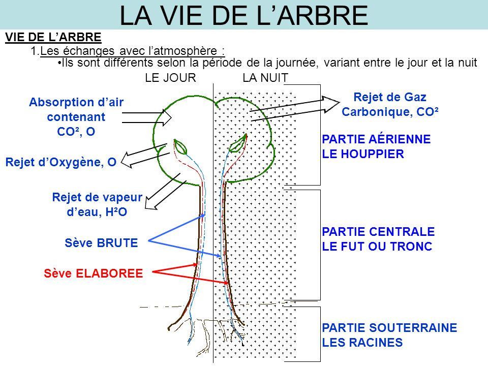 LA VIE DE LARBRE VIE DE LARBRE 1.Les échanges avec latmosphère : Ils sont différents selon la période de la journée, variant entre le jour et la nuit