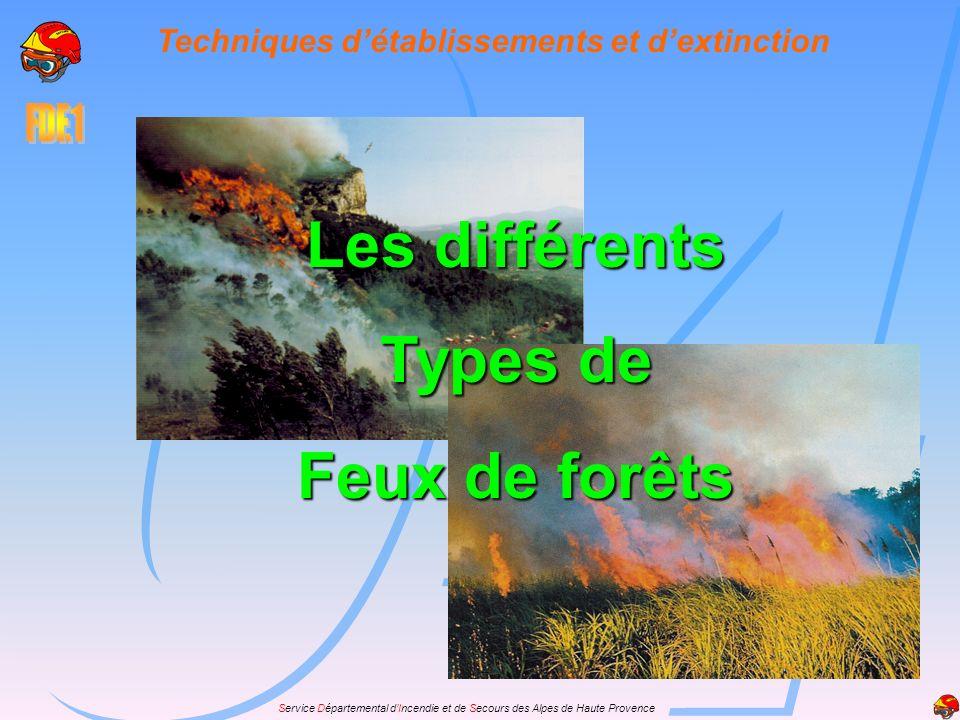 Service Départemental dIncendie et de Secours des Alpes de Haute Provence Techniques détablissements et dextinction Les différents Types de Feux de fo