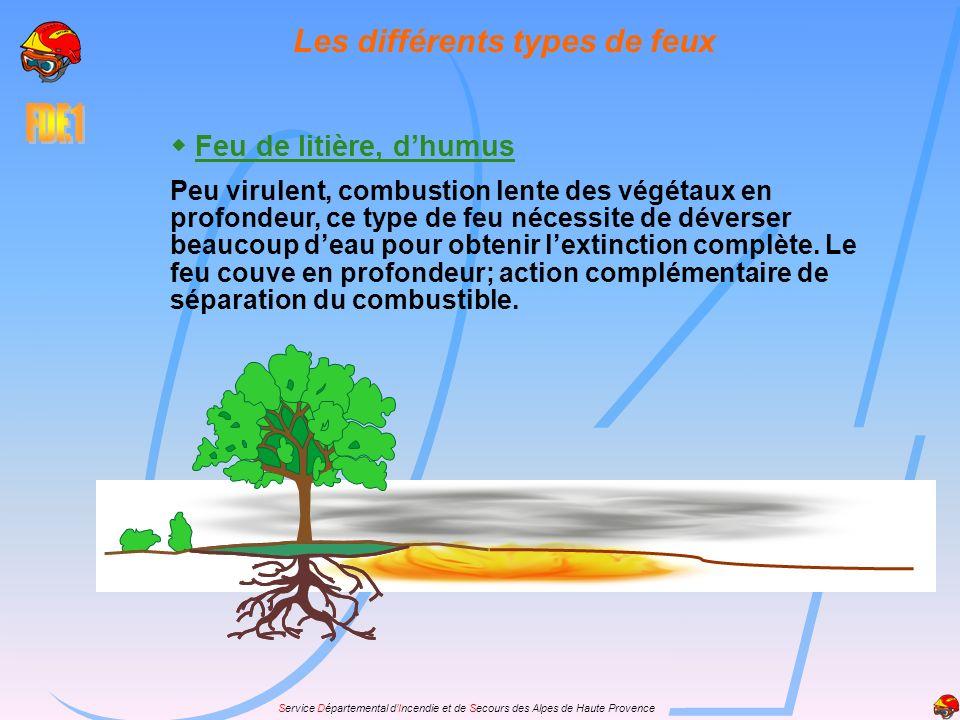 Service Départemental dIncendie et de Secours des Alpes de Haute Provence Feu de litière, dhumus Peu virulent, combustion lente des végétaux en profon