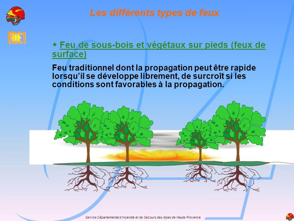 Service Départemental dIncendie et de Secours des Alpes de Haute Provence Feu de sous-bois et végétaux sur pieds (feux de surface) Feu traditionnel do