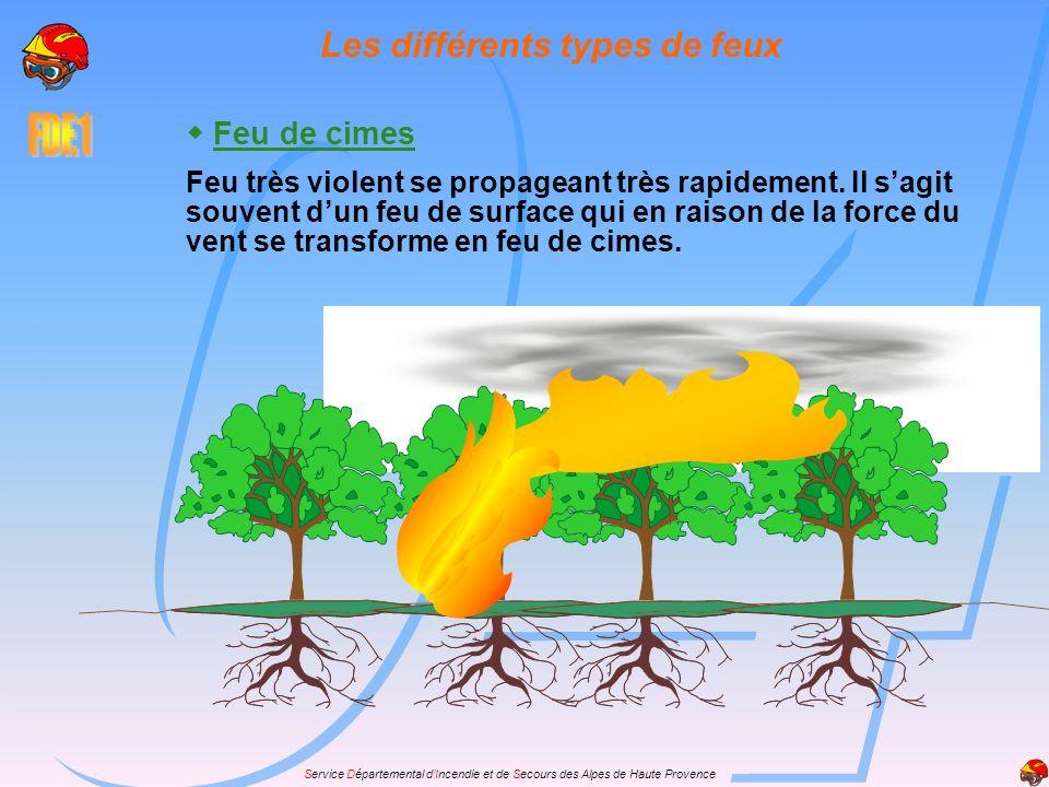 Service Départemental dIncendie et de Secours des Alpes de Haute Provence Feu de cimes Feu très violent se propageant très rapidement. Il sagit souven