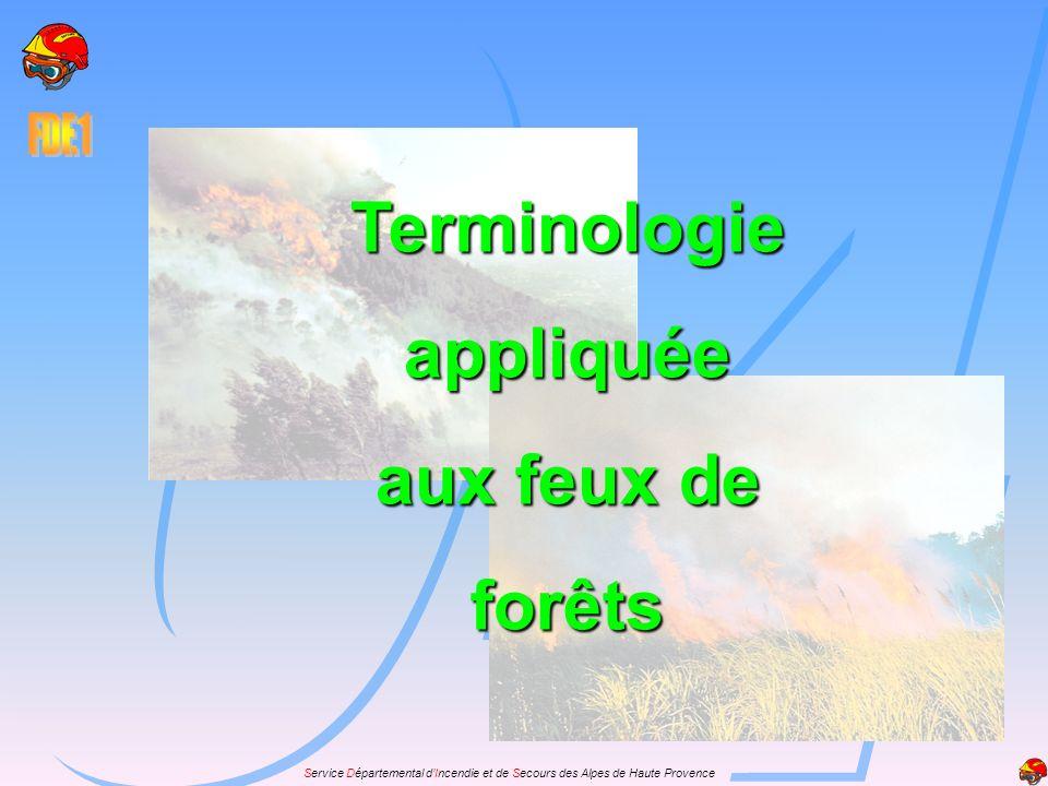 Service Départemental dIncendie et de Secours des Alpes de Haute Provence Terminologieappliquée aux feux de forêts