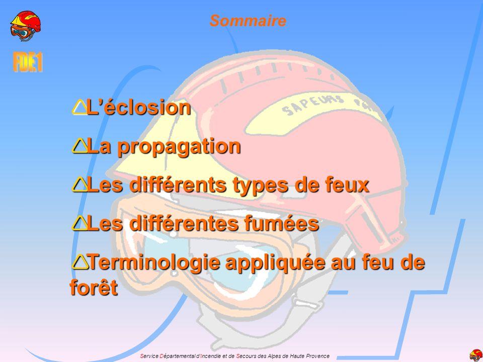 Service Départemental dIncendie et de Secours des Alpes de Haute Provence Léclosion