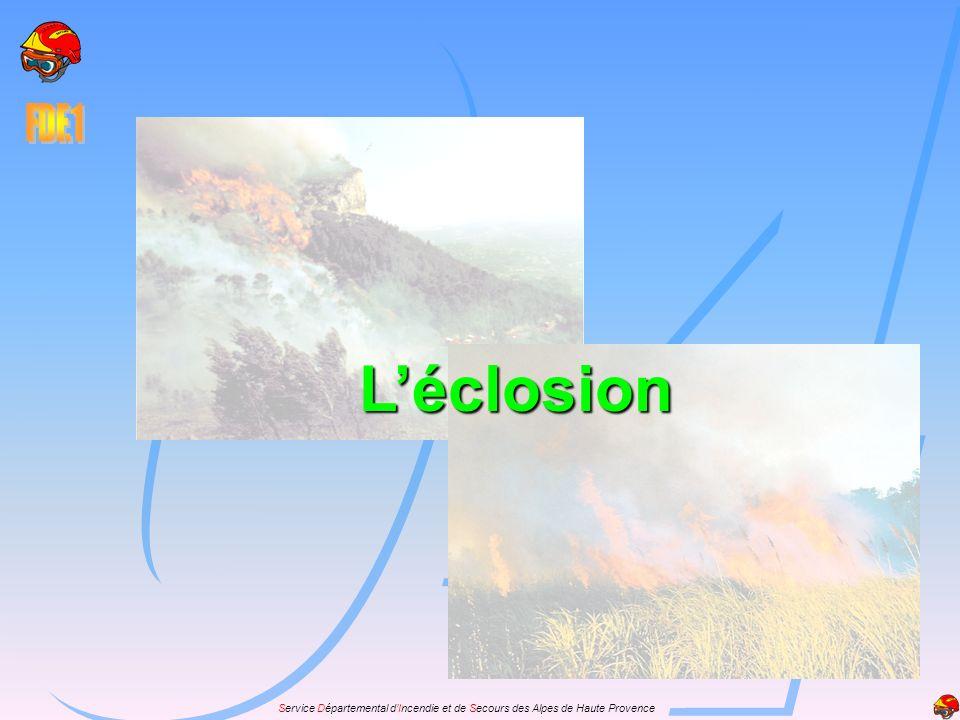 Les différentes phases et les causes: Léclosion a lieu dans la couverture morte par linflammation de brindilles sous laction dune source de chaleur.