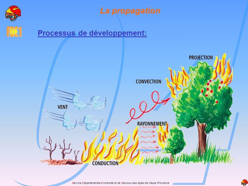 Service Départemental dIncendie et de Secours des Alpes de Haute Provence Processus de développement: La propagation