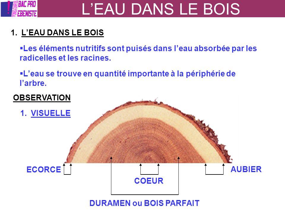 LEAU DANS LE BOIS 1.LEAU DANS LE BOIS Les éléments nutritifs sont puisés dans leau absorbée par les radicelles et les racines. Leau se trouve en quant