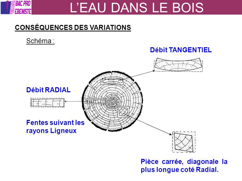 LEAU DANS LE BOIS CONSÉQUENCES DES VARIATIONS Schéma : Débit TANGENTIEL Débit RADIAL Pièce carrée, diagonale la plus longue coté Radial. Fentes suivan
