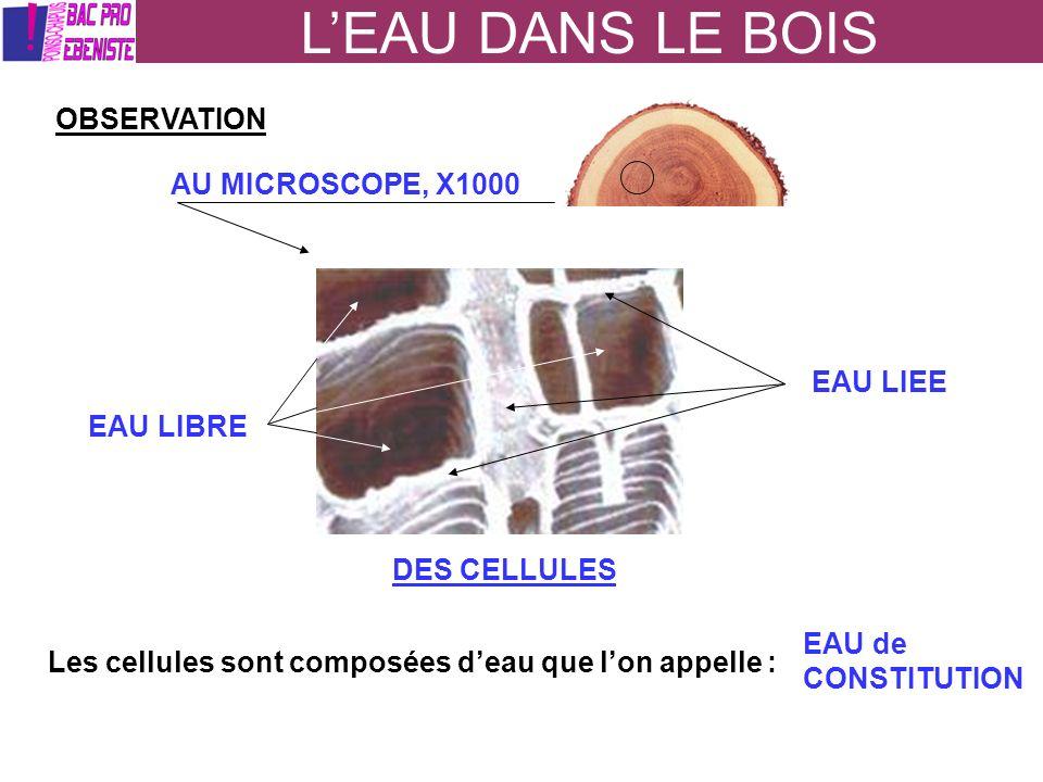LEAU DANS LE BOIS OBSERVATION AU MICROSCOPE, X1000 DES CELLULES EAU LIBRE EAU LIEE Les cellules sont composées deau que lon appelle : EAU de CONSTITUT