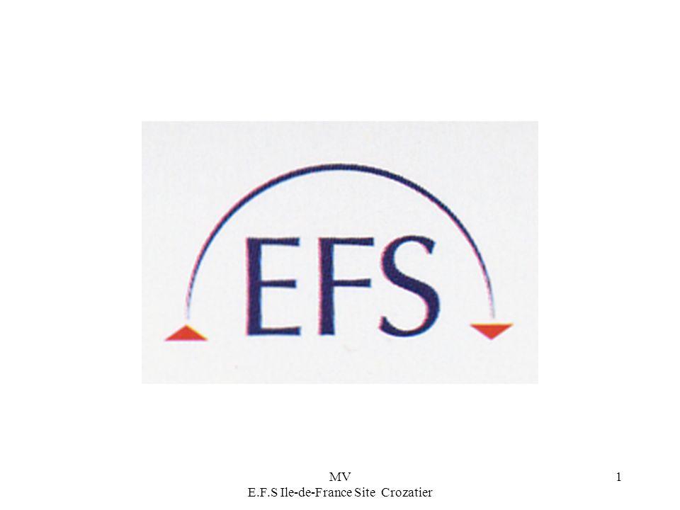MV E.F.S Ile-de-France Site Crozatier 1