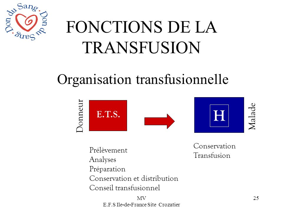 MV E.F.S Ile-de-France Site Crozatier 25 FONCTIONS DE LA TRANSFUSION Organisation transfusionnelle Donneur E.T.S. Prélèvement Analyses Préparation Con