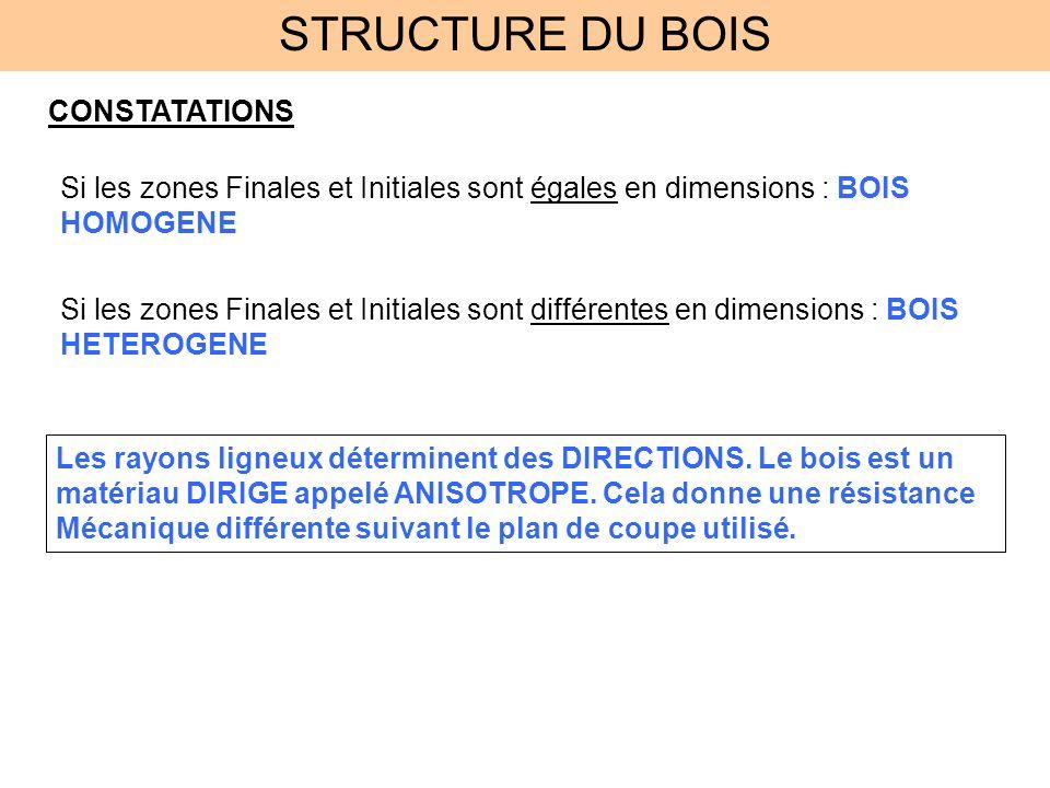 STRUCTURE DU BOIS CONSTATATIONS Si les zones Finales et Initiales sont égales en dimensions : BOIS HOMOGENE Si les zones Finales et Initiales sont dif