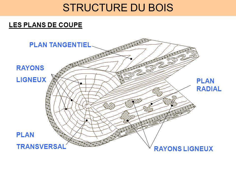 STRUCTURE DU BOIS LES PLANS DE COUPE RAYONS LIGNEUX PLAN TRANSVERSAL PLAN TANGENTIEL PLAN RADIAL RAYONS LIGNEUX