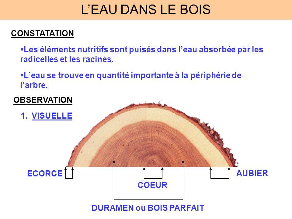 LEAU DANS LE BOIS CONSTATATION Les éléments nutritifs sont puisés dans leau absorbée par les radicelles et les racines. Leau se trouve en quantité imp