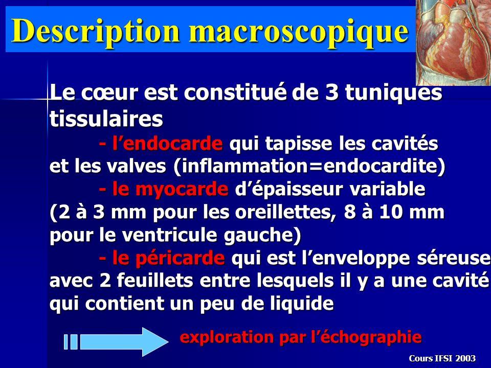 Cours IFSI 2003 Description macroscopique Le cœur est constitué de 3 tuniques tissulaires - lendocarde qui tapisse les cavités et les valves (inflamma