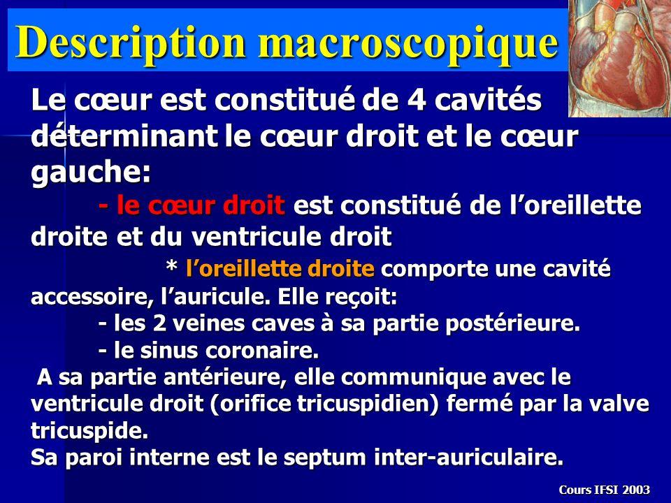 Cours IFSI 2003 Description macroscopique Le cœur est constitué de 4 cavités déterminant le cœur droit et le cœur gauche: - le cœur droit est constitu
