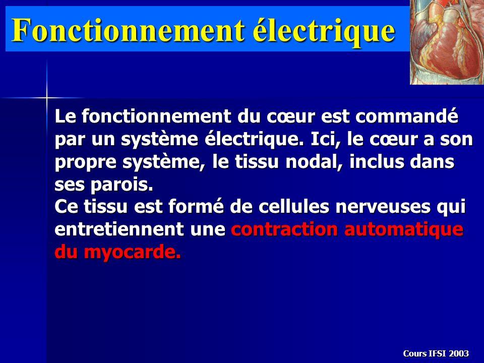 Fonctionnement électrique Le fonctionnement du cœur est commandé par un système électrique. Ici, le cœur a son propre système, le tissu nodal, inclus