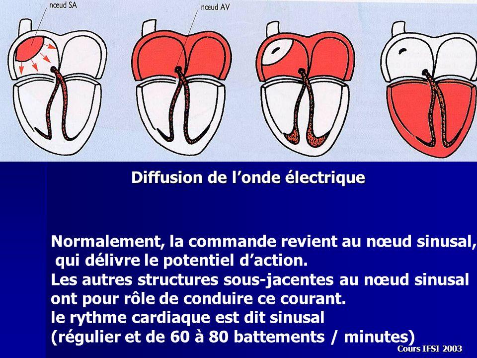 Cours IFSI 2003 Diffusion de londe électrique Normalement, la commande revient au nœud sinusal, qui délivre le potentiel daction. Les autres structure